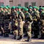 armée nle