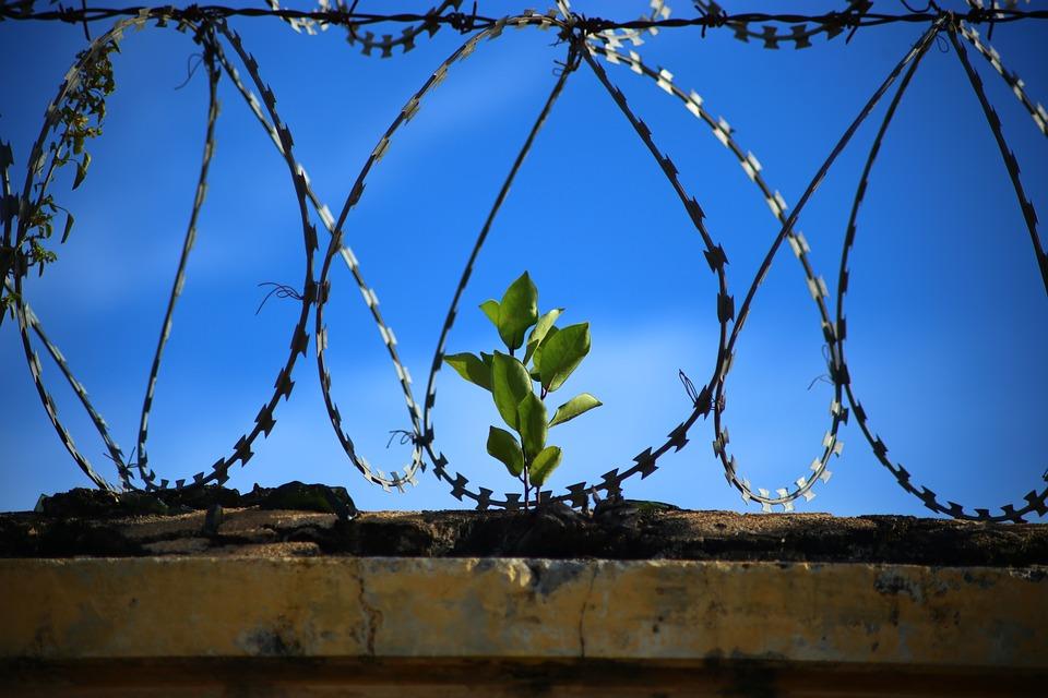 Illustration Prison - pixabay