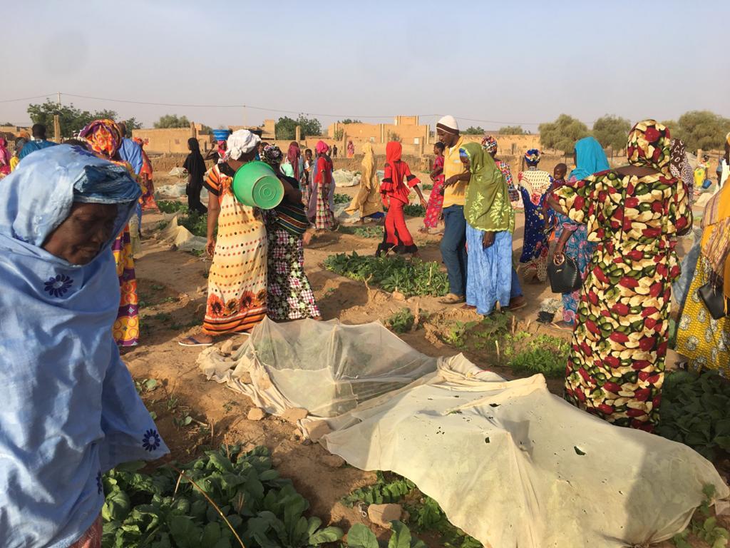 Des femmes qui exploitent un jardin maraîcher